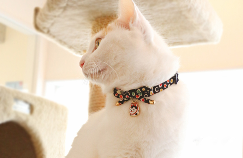 Buterfly Bowknot Cat Collar With Lovely Cat Charm